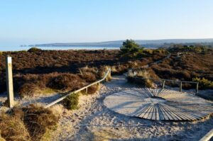 Viewpoint at Studland Beach looking across to Old Harry Rocks