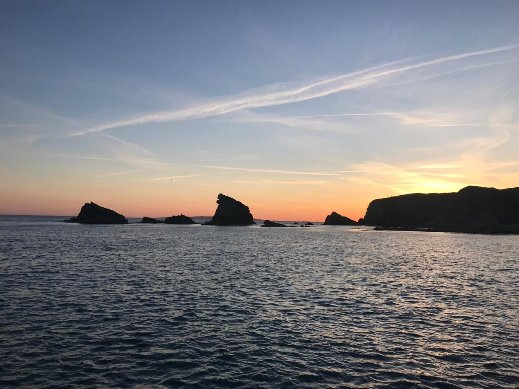 mupes bay sightseeing trip snapper charters