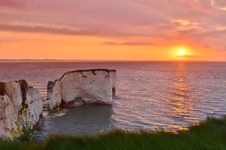 old harry rock at sunset